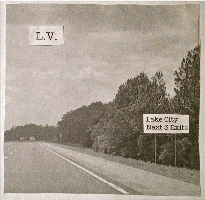 Lily Vakili Lake City