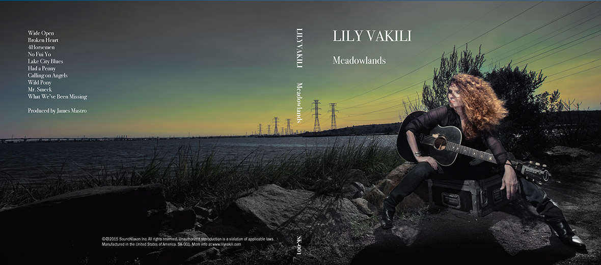 lily vakili meadowlands
